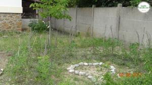 La permaculture est une agriculture permanente