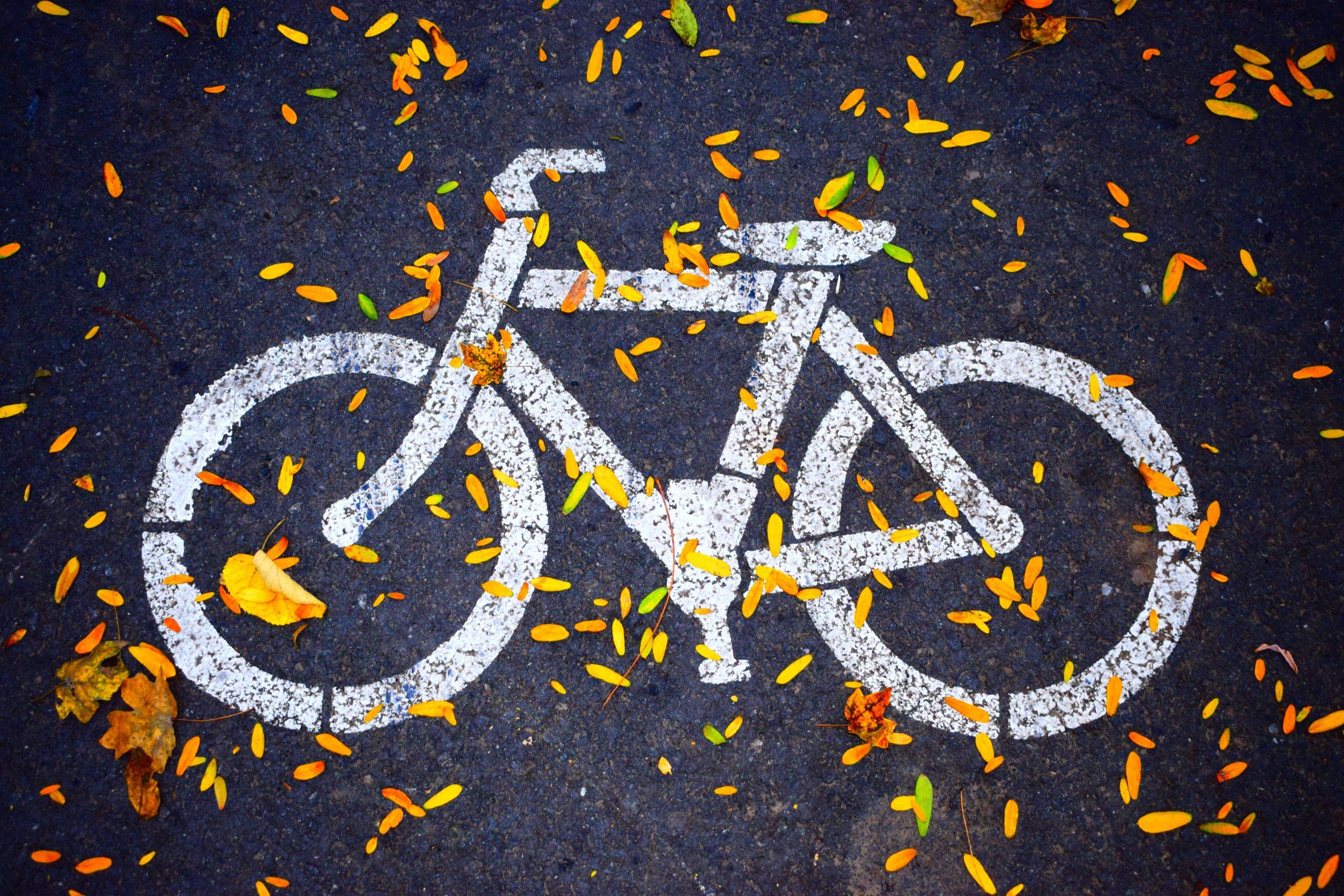 Pensée sauvage - Prendre son vélo