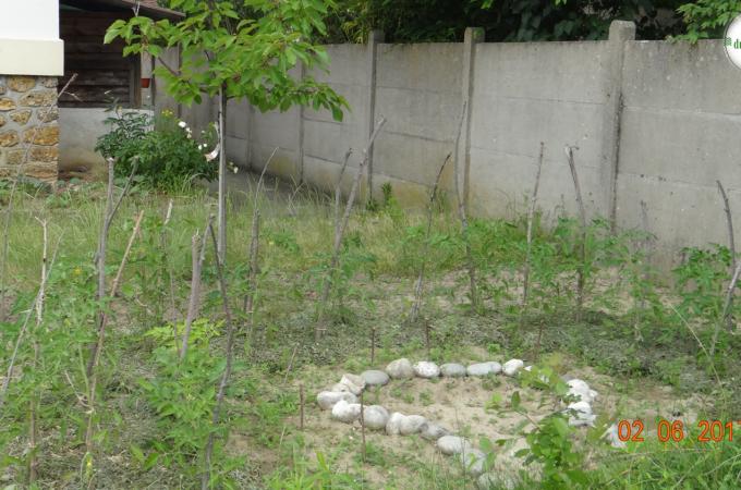 La permaculture c'est imiter la nature et notamment ses formes pour votre potager